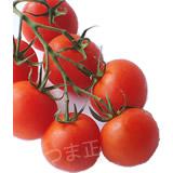 枝付きトマト