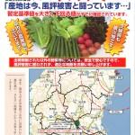 20110407-jamutsumi