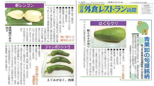 20110704-gaishoku-s