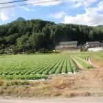 20110912-nagano10