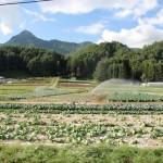 20110912-nagano8