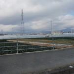 20120129-tokushima (23)