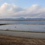 20120129-tokushima (44)