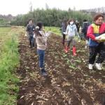 20160117farm (24)