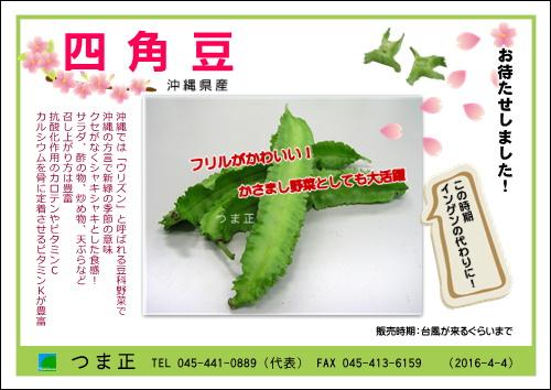 shikakumame