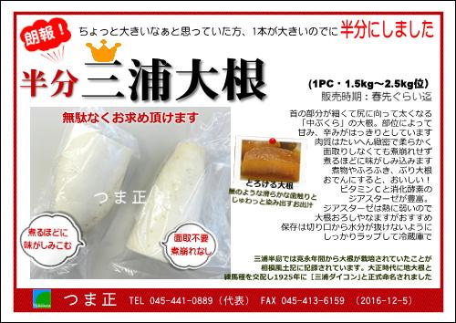 half-miura